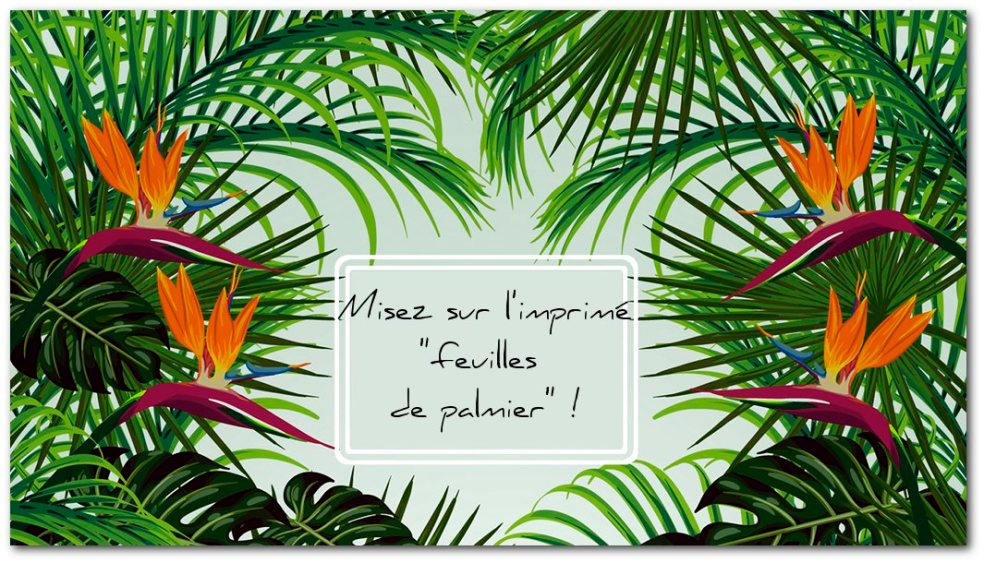 Tropical Palm © Freepik